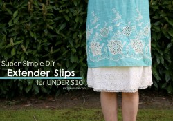 extender slips 2